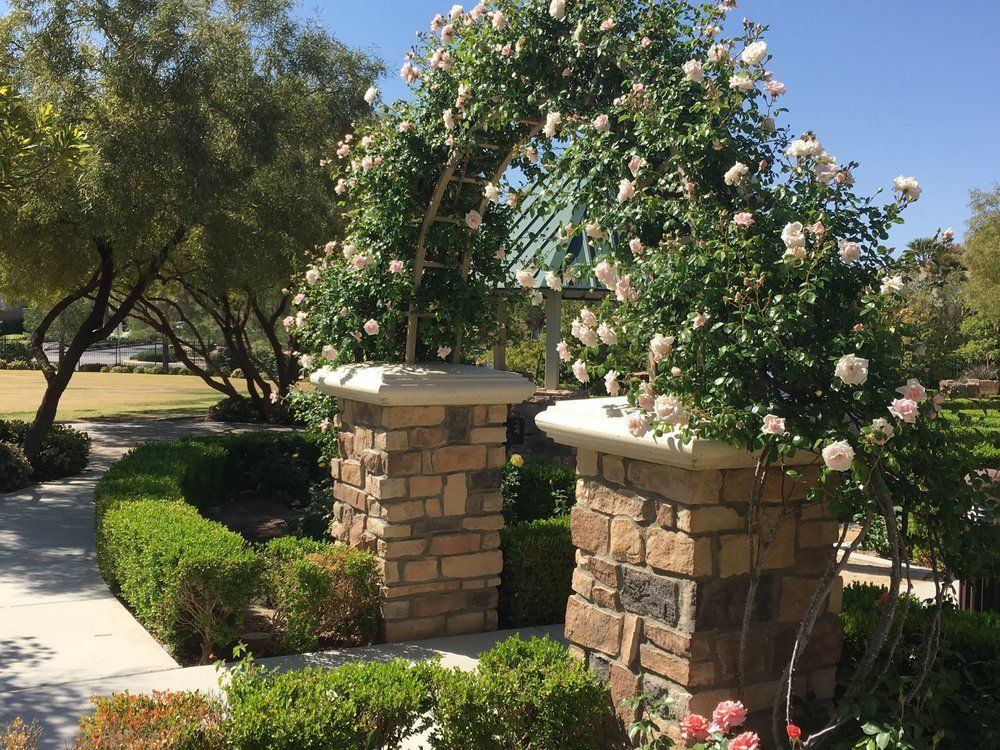 Rose Park In Southern Highlands Las Vegas Park Weddings Rose Park Wedding Locations