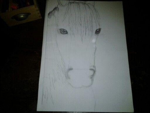 Zelfgetekend paard