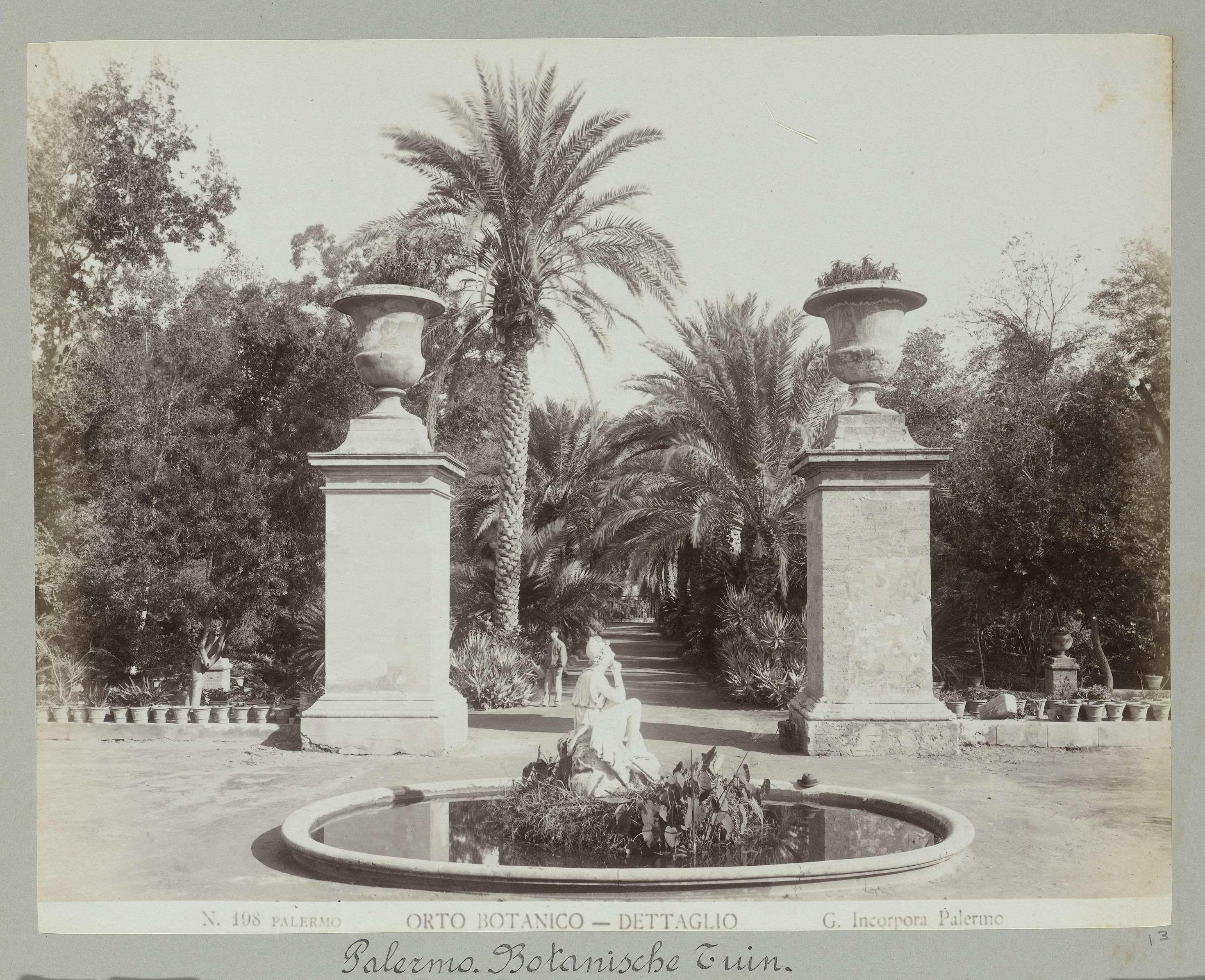 Giuseppe Incorpora | N. 198 Palermo, Orto Botanico - Dettaglio, Giuseppe Incorpora, , c. 1893 - c. 1903 | Een vijver in de botanische tuin van Palermo.