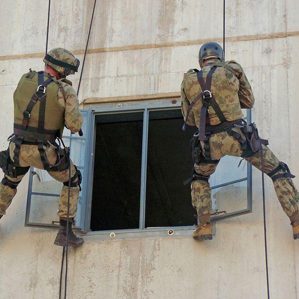 a89079c9fbc SAP Special Task Force