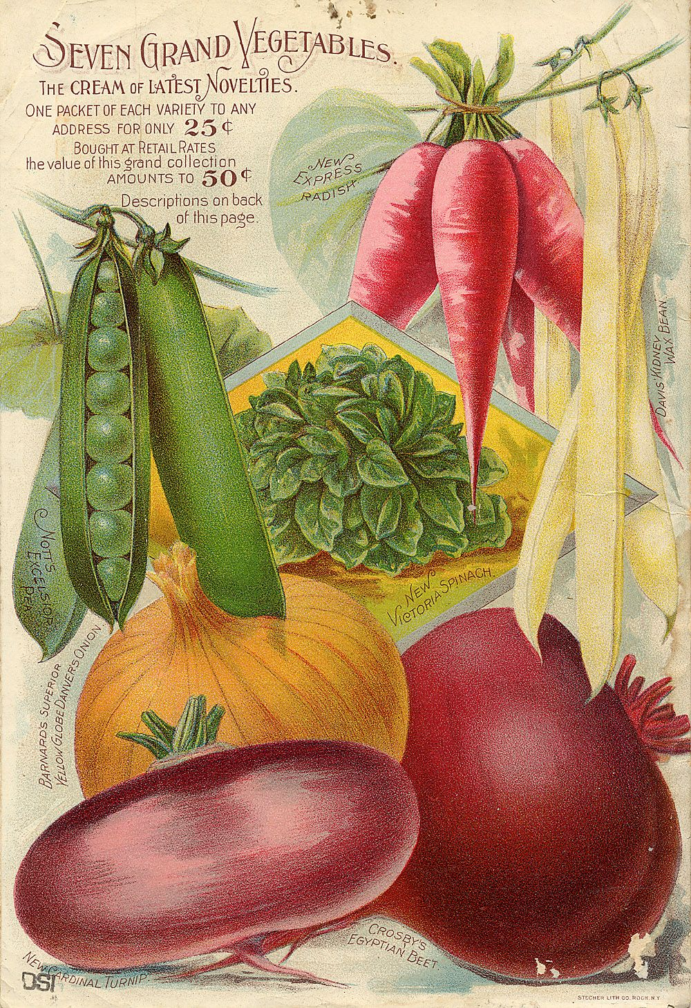 Seed Catalogs from Smithsonian Institution Libraries i never