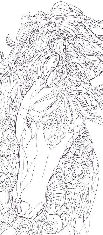 Pin de Kim Tyreman en emily | Pinterest | Caballos, Dibujo y Arte