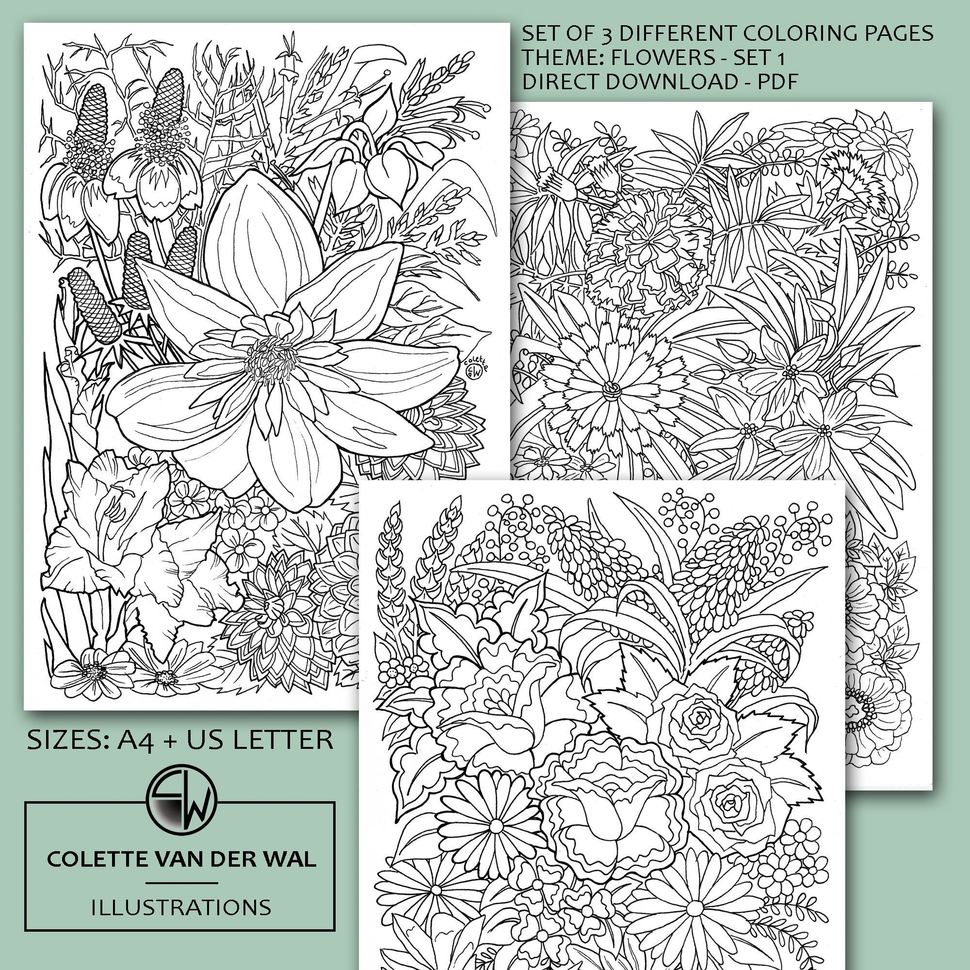 Bloemen Kleurplaten Set 1 Set Van 3 Verschillende Afbeeldingen Handgetekende Illustraties Directe Download Pdf Formaat A4 Usletter Bloemen Kleurplaten Handgetekend Kleurplaten