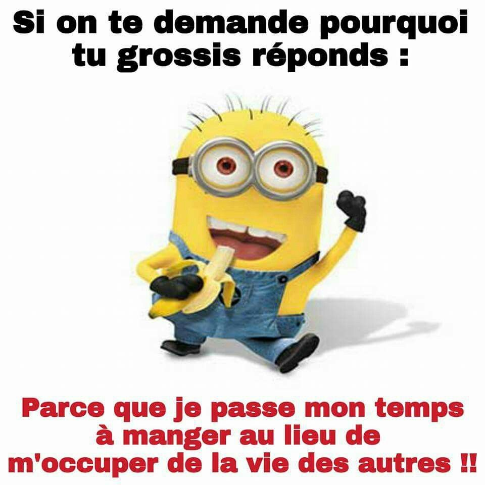 Pin by solenn collong on histoire dhumour pinterest humor and memes stickers humour minions images cute qoutes humor sticker decals comic so funny altavistaventures Image collections