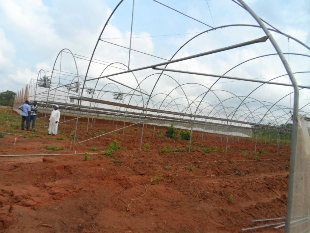 Installation Requirements 8m By 48m Dc1 The Following Are How To Build A Greenhouse And All That Needs To Greenhouse Supplies Greenhouse Build A Greenhouse