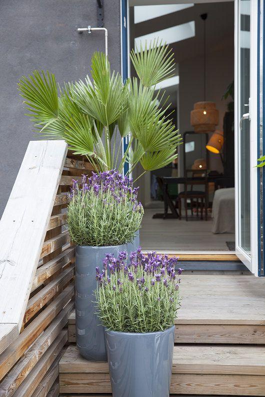 krukker på terrassen