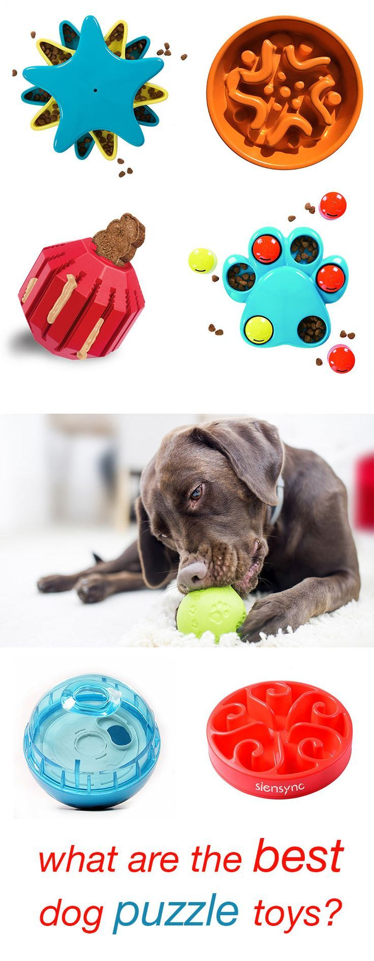 Best Dog Puzzle Toys The Top Choices Reviewed The Best Dog