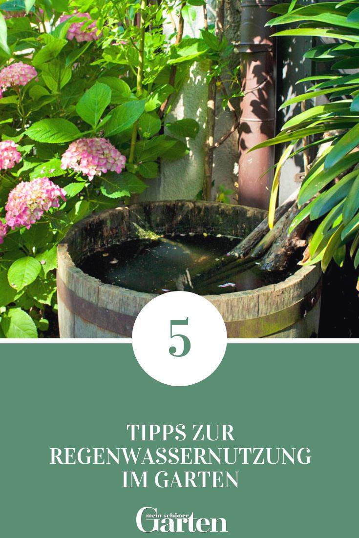 5 Tipps Zur Regenwassernutzung Im Garten Desmondo Garten Balkon