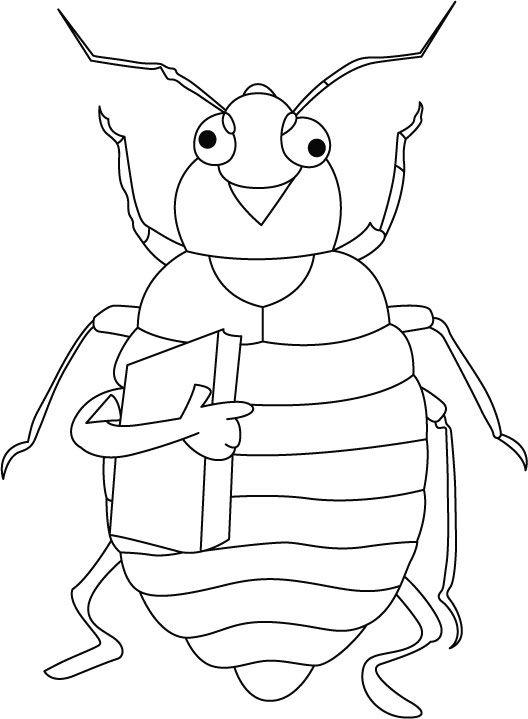 Cicada Coloring Pages Preschool And Kindergarten Bug Coloring