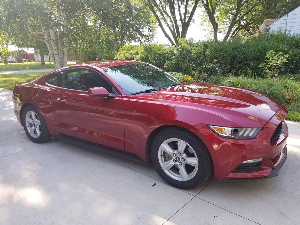 Premium (With images) True car, Vehicle paint, Car detailing