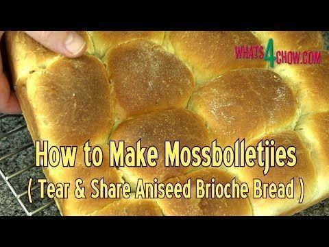 How to Make Mossbolletjies - South Africa's Traditional Brioche - Aniseed Flavored Tear & Share Bread #tearandsharebread How to Make Mossbolletjies - South Africa's Traditional Brioche - Aniseed Flavored Tear & Share Bread #tearandsharebread How to Make Mossbolletjies - South Africa's Traditional Brioche - Aniseed Flavored Tear & Share Bread #tearandsharebread How to Make Mossbolletjies - South Africa's Traditional Brioche - Aniseed Flavored Tear & Share Bread #tearandsharebread