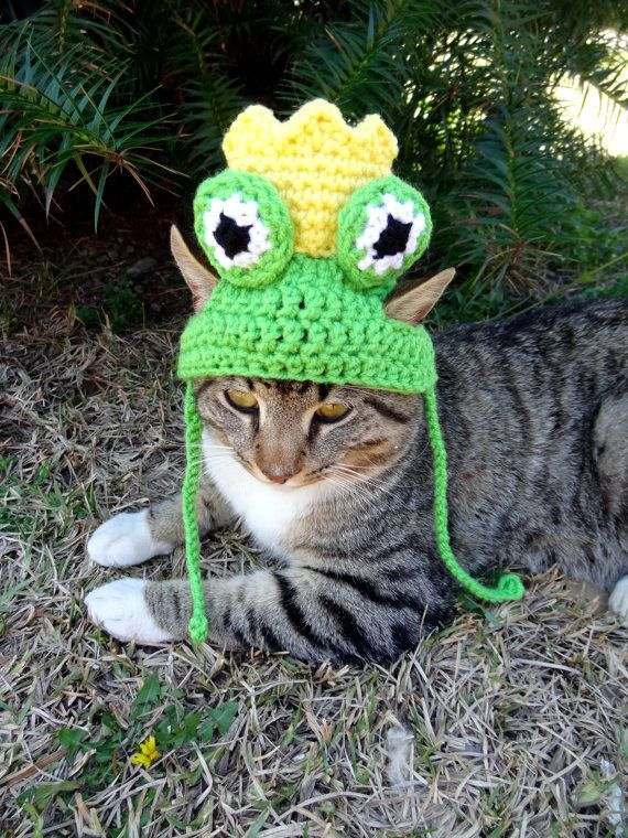 This listing is for one crocheted frog prince hat for cats
