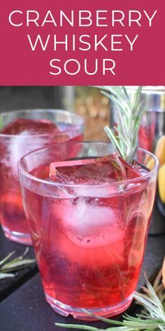 Cranberry Whiskey Sour - Camping Cocktails For Fall - The Spicy Apron