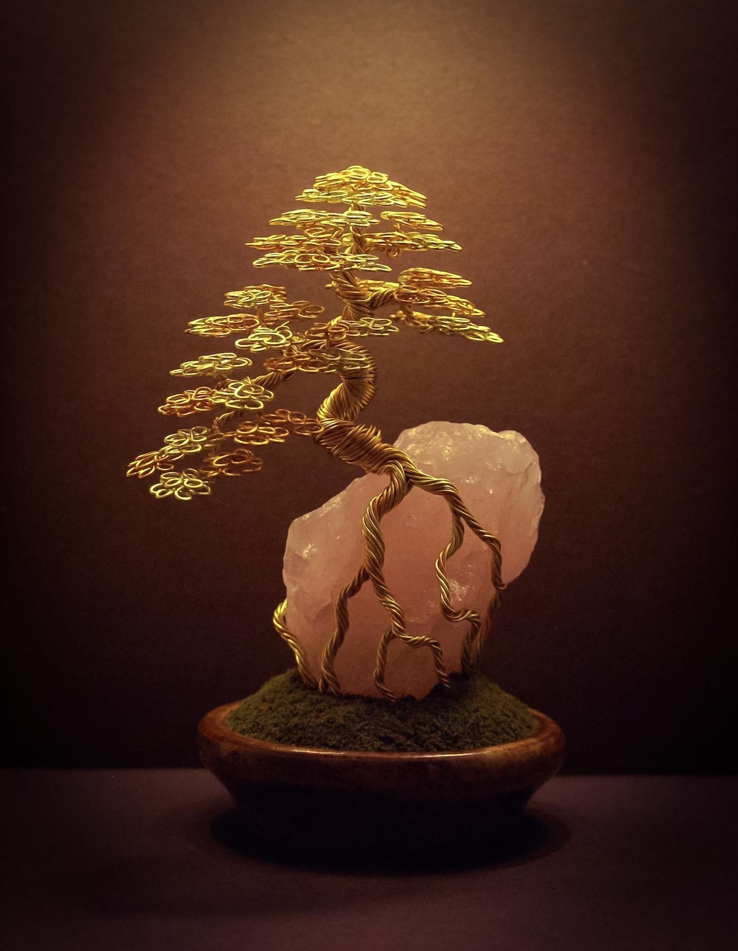 New Wire Bonsai Tree Sculptures Made By Steve Bowen Imgur Tree Sculpture Wire Trees Bonsai Tree
