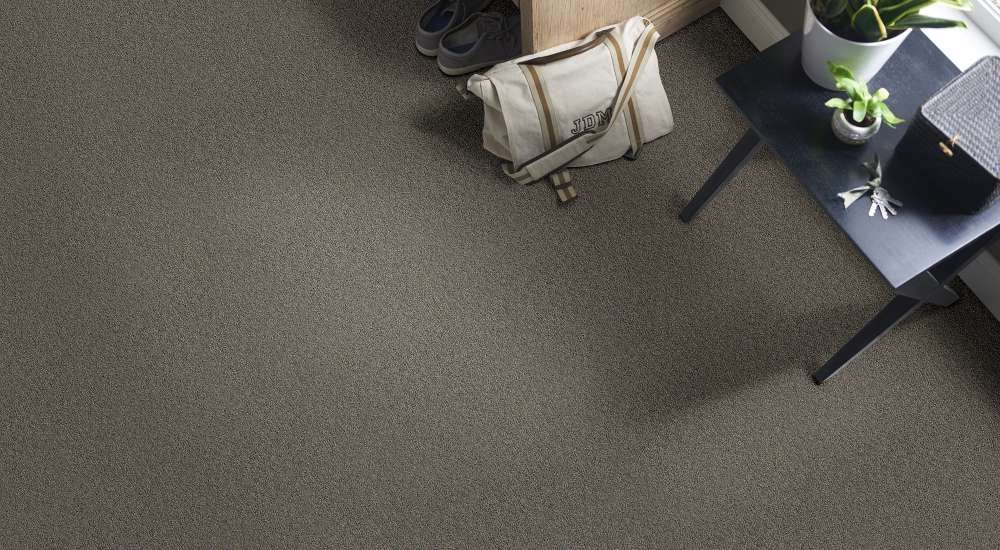 The Best 15 Pics Of Neyland 3 Shaw Carpet And Description Wall Carpet Shaw Carpet Modern Carpets Design