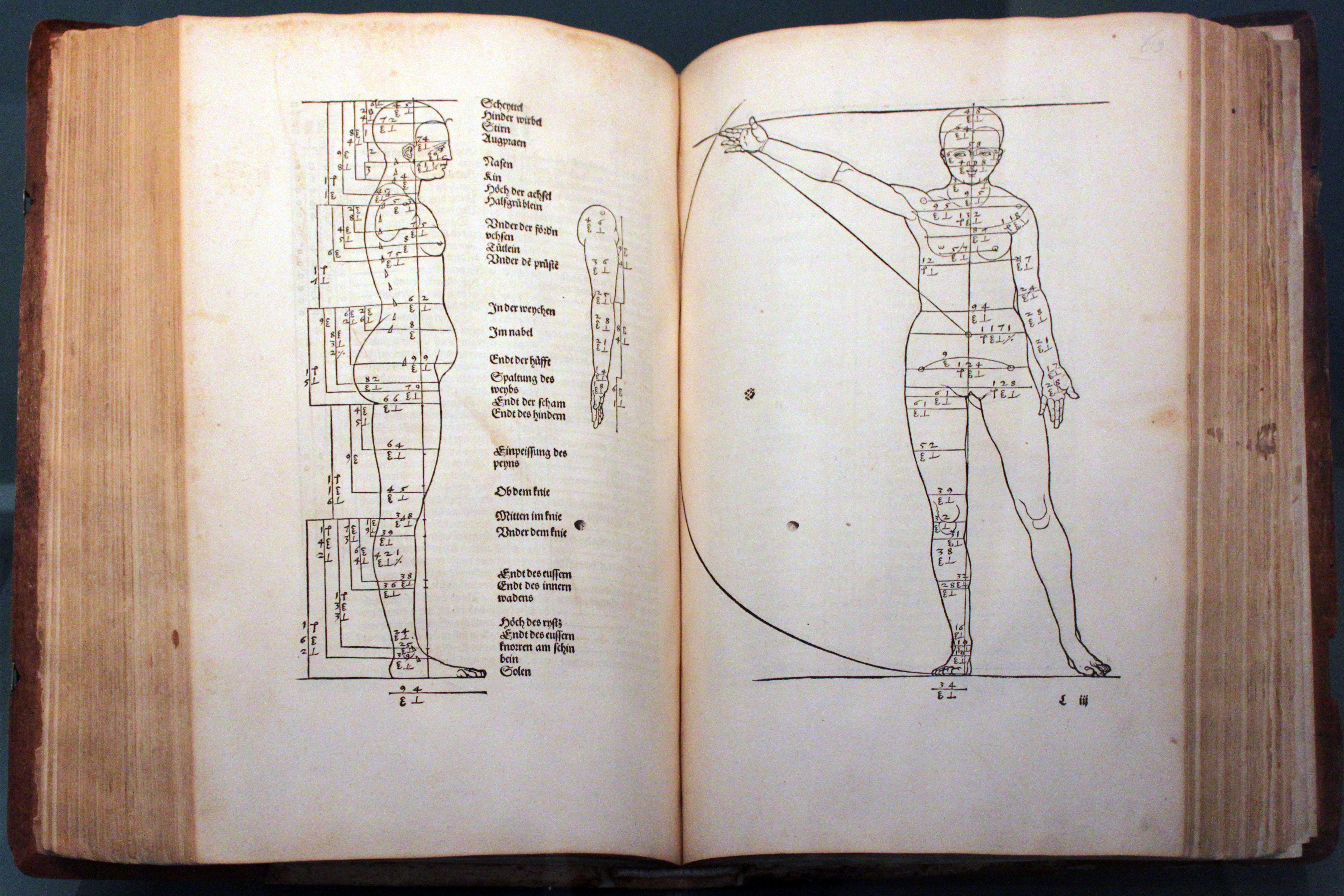 A. Dürer, Vier Bücher von menschlicher Proportion. Núremberg ...
