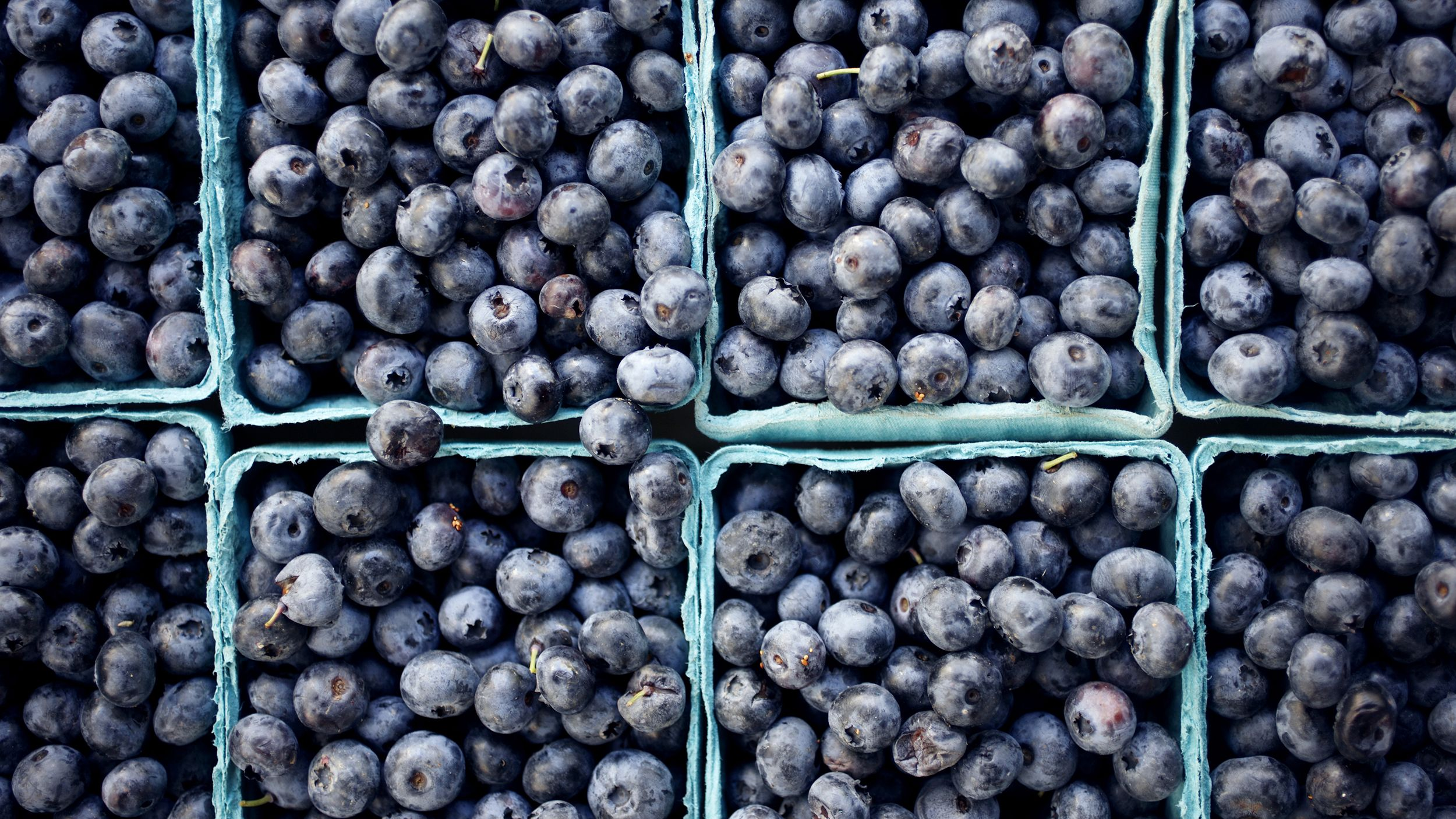 7 Anti Aging Foods You Should Be Eating Anti Aging Food Blueberry Longevity Recipes