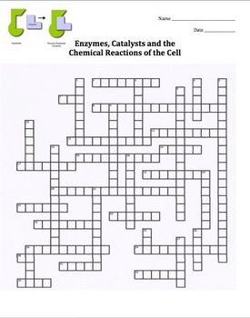 Enzymes Crossword Puzzle Cells Biology Teaching Biology