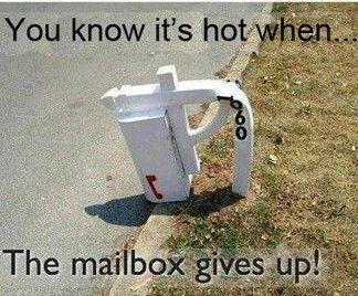 Arizona I M Sure Usps Humor Mailbox You Had One Job