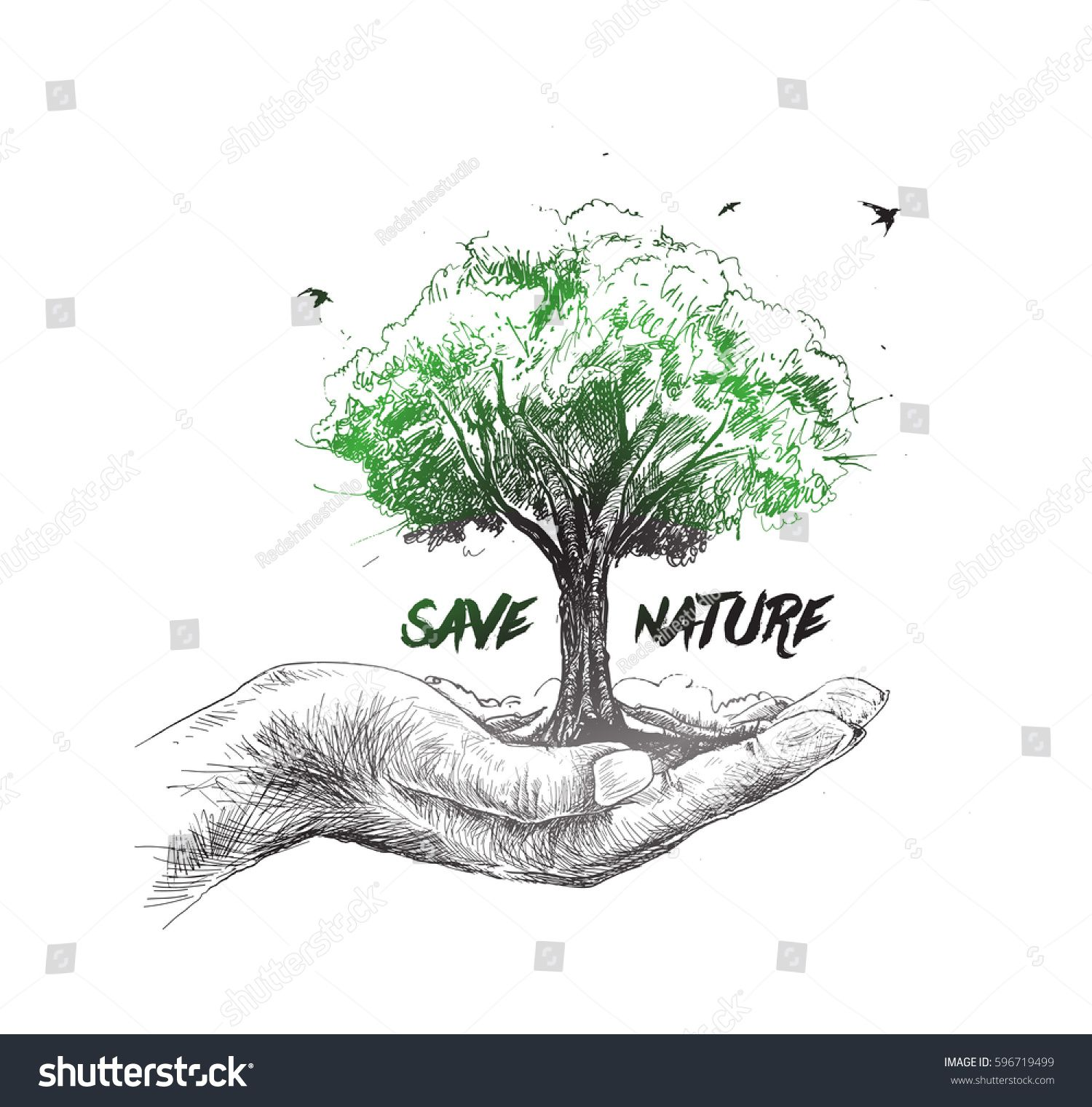 Save Nature Human Hand Holding Tree Against White Background Ecology And Earth Day Concept Save Nature Earth Drawings Save Earth Drawing