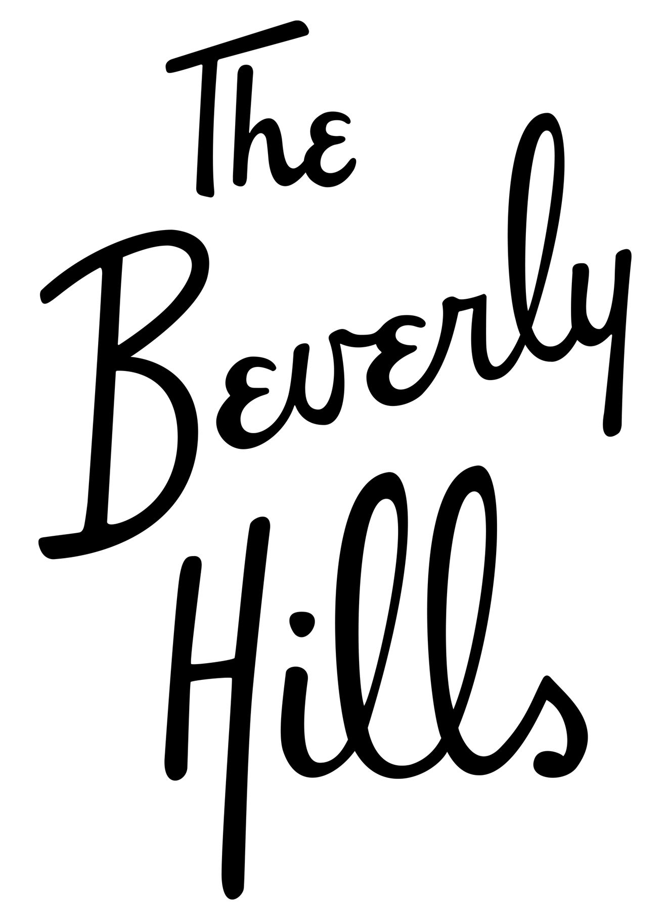 THOMAS SCHWAB STUDIO | The Beverly Hills Hotel | Types of