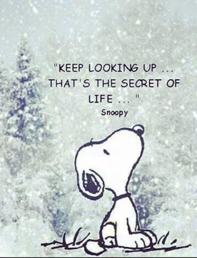 J On Twitter Snoopy Quotes Positive Quotes For Life December Quotes