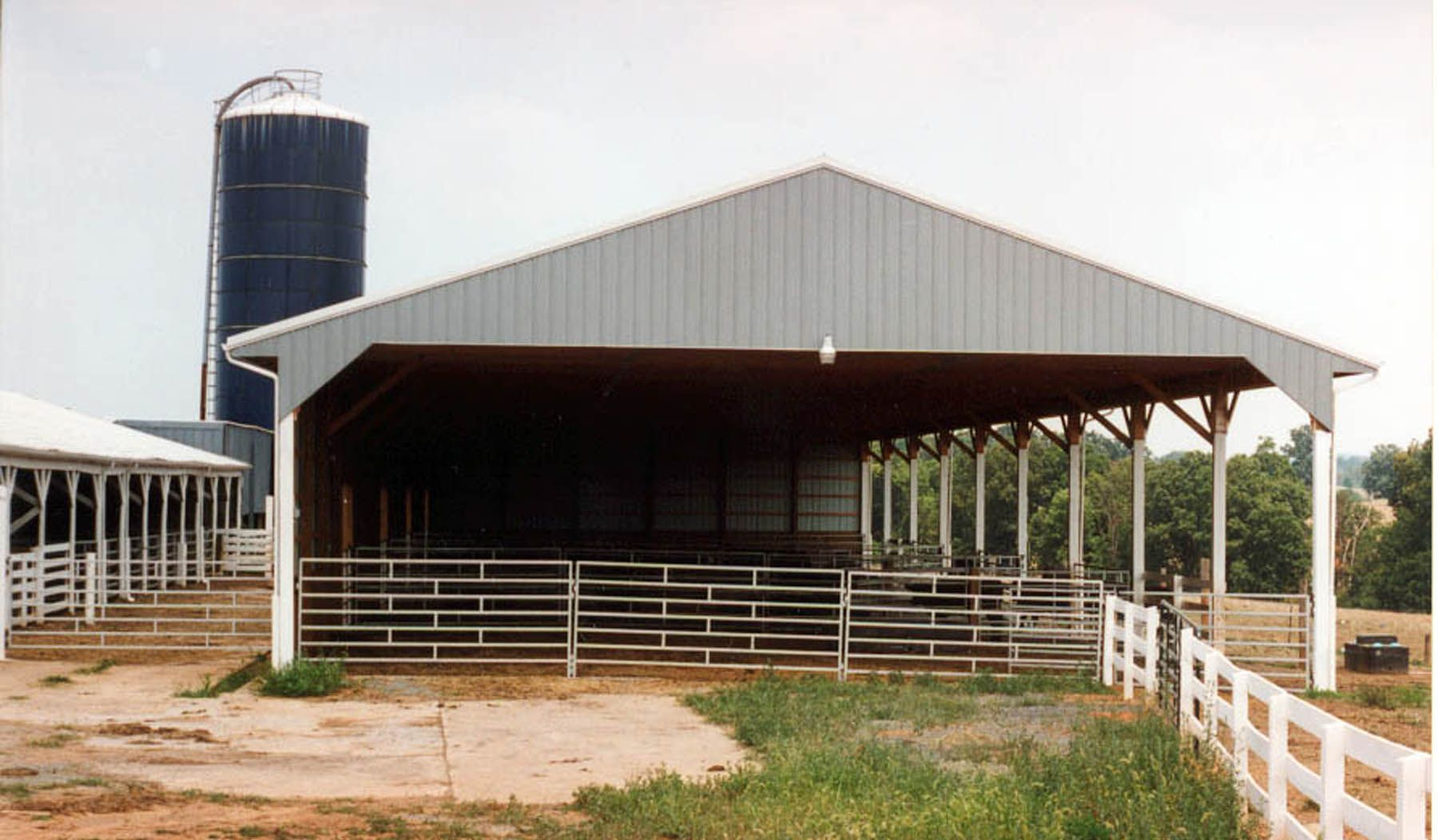Cattle barns 36 x 108 cattle show barn