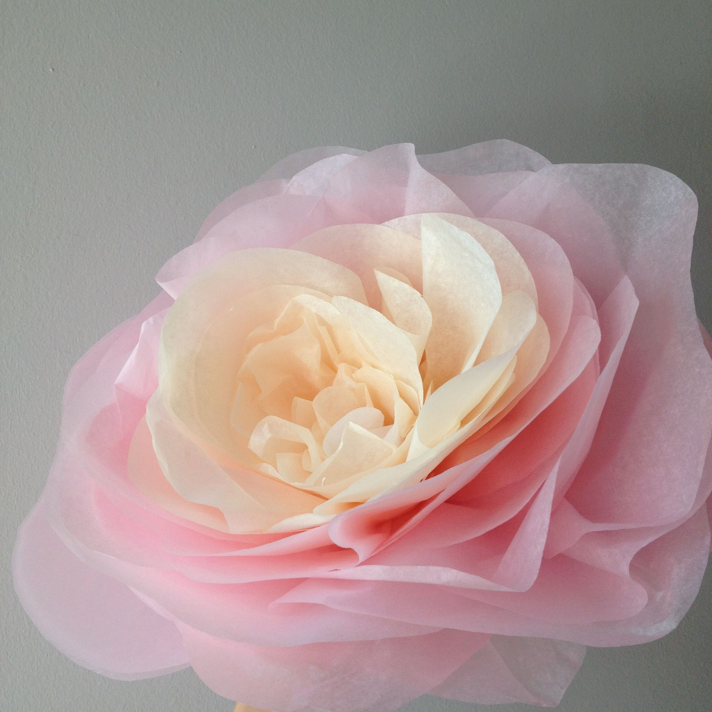 Paper flower made out tissue paper colours white cream paper flower made out tissue paper colours white cream mightylinksfo