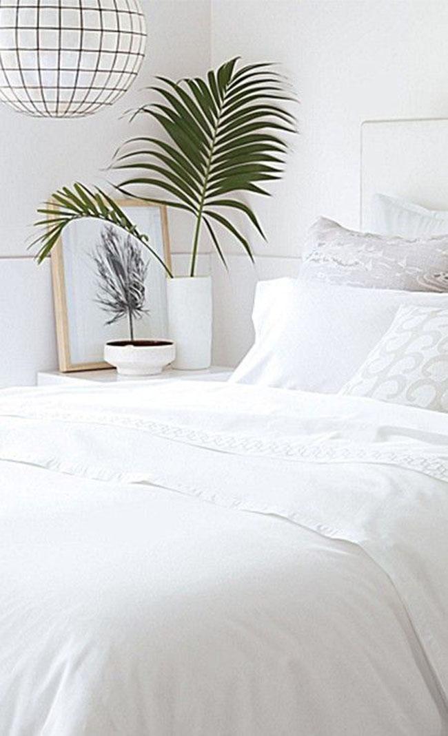 decoracion-blanco+plantas