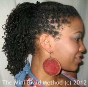 Mini Braids Braiding Your Natural Hair Without Extensions Natural Hair Styles Natural Hair Braids Box Braids Hairstyles