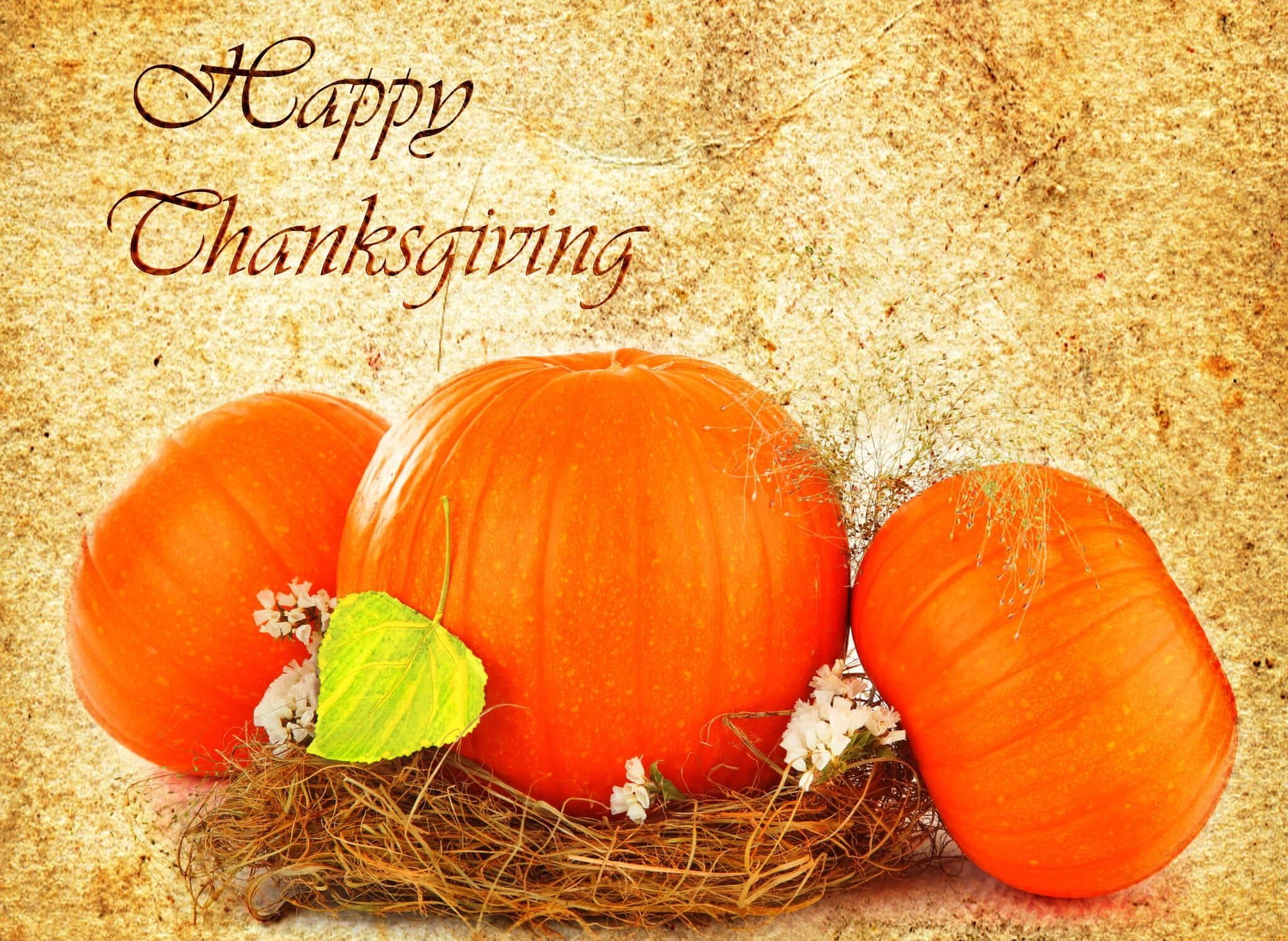 Enjoy Thanksgiving At The Village Inn The Village Inn Known As One Of The Best Restaurants I Holiday Greeting Cards Holidays Thanksgiving Thanksgiving Images
