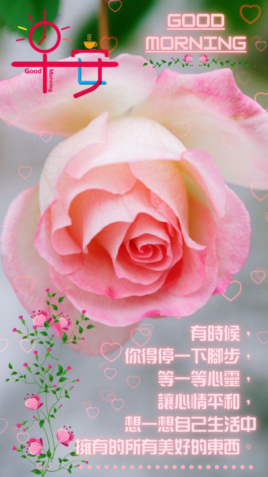 生活中美好的東西 Good Morning Friends Good Morning Friends Quotes Good Morning Wishes