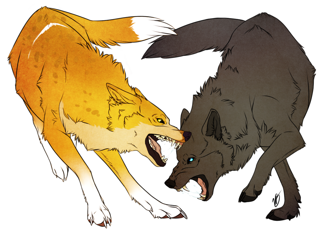 Dog Fight by VictoriaDB on deviantART | Anime wolves 2 ...