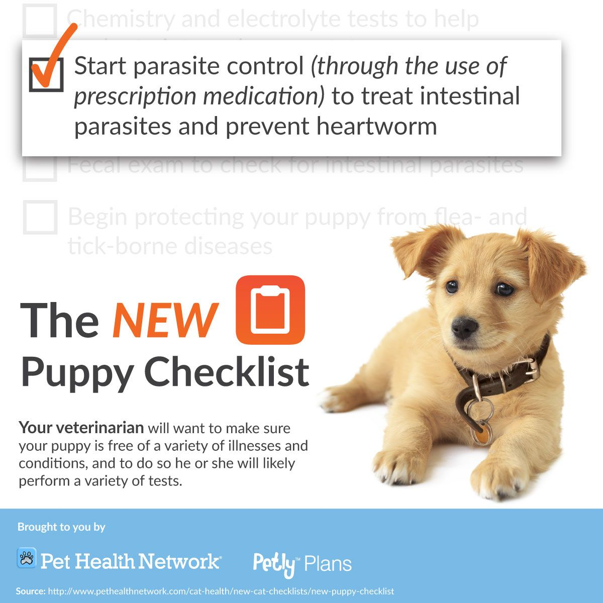 Pin by Park Grove Pet Hospital on Heartworm prevention