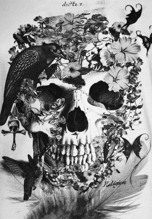 Edgar Skeleton : Photo