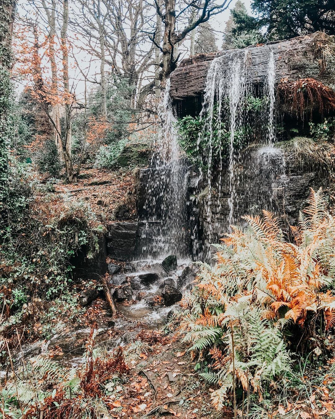 """Lisa Clare Stoker on Instagram: """"HELLO SEPTEMBER!! Officially on the Autumn bandwagon as of today so decided to throw it back to this gorgeous stroll over Beeley and…"""" #helloseptember Lisa Clare Stoker on Instagram: """"HELLO SEPTEMBER!! Officially on the Autumn bandwagon as of today so decided to throw it back to this gorgeous stroll over Beeley and…"""" #helloseptember Lisa Clare Stoker on Instagram: """"HELLO SEPTEMBER!! Officially on the Autumn bandwagon as of today so decided to throw #helloseptember"""