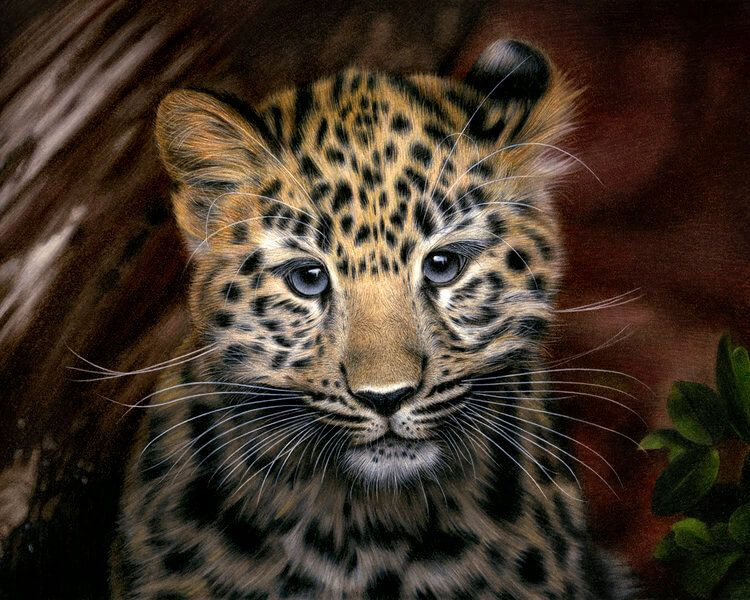 Image result for colored pencil art (With images) Animal