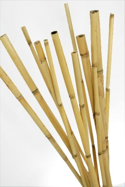 Bamboo Poles 20in Pack Of 12 Bamboo Poles Bamboo Crafts Bamboo