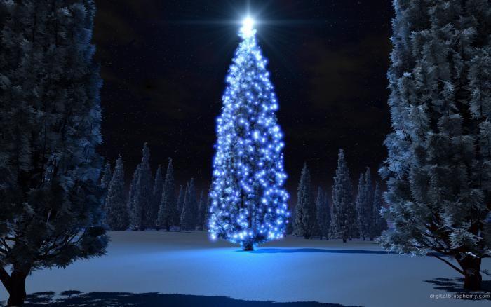 Christmas Tree Cowley Blog Pinterest