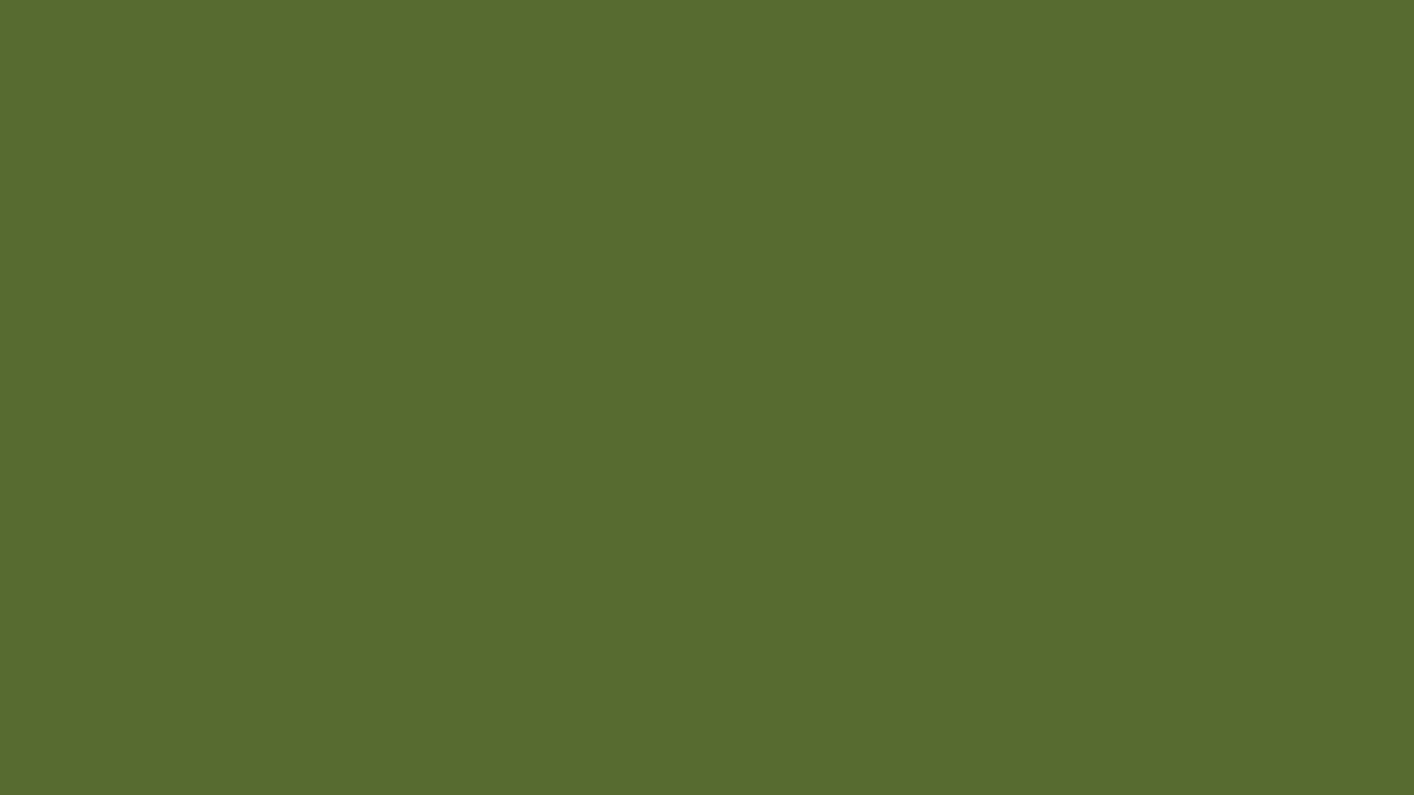 1280x720 Dark Olive Green Solid Color Background