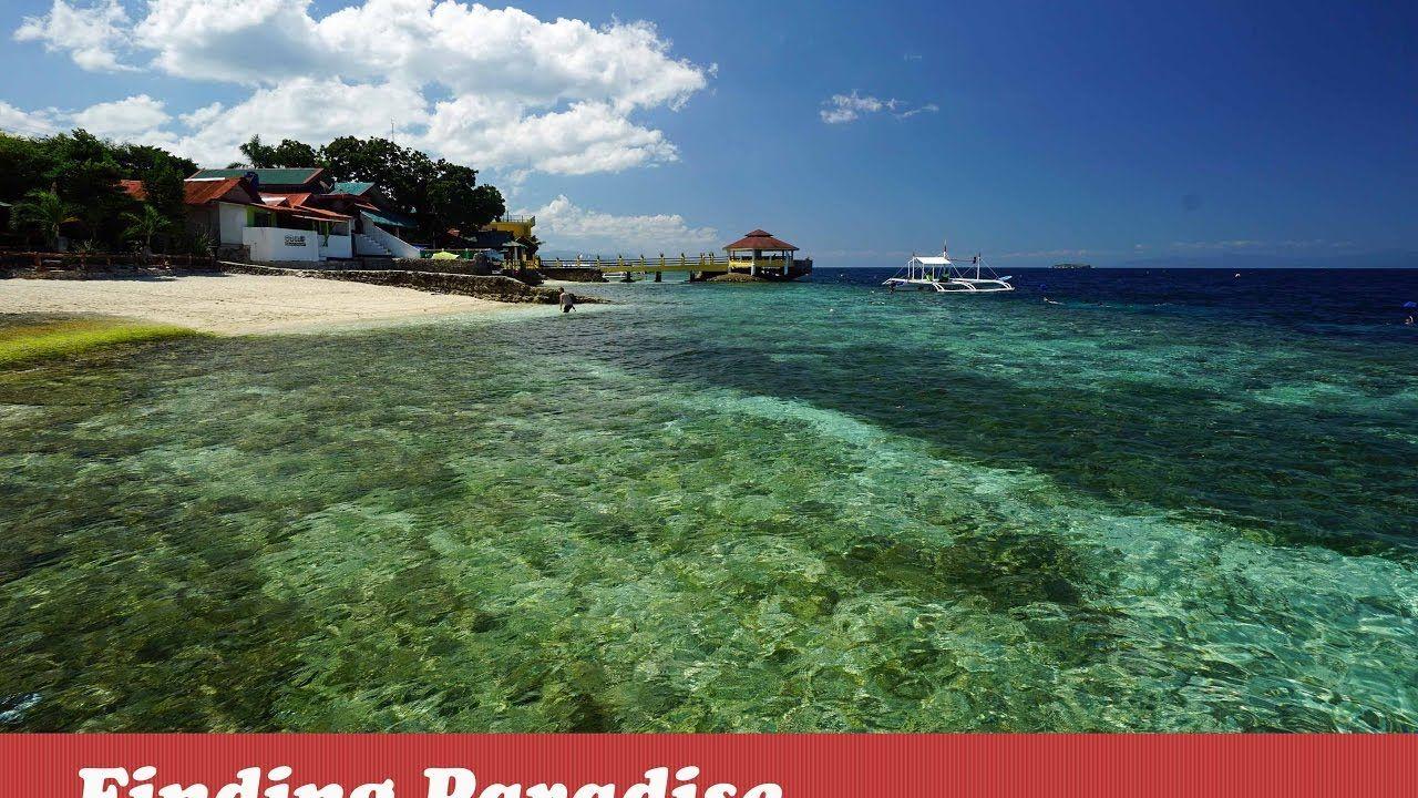 Savedra Beach Bungalows Best Budget Resorts In Moalboal Cebu Philippines Travel Beach Bungalows Best Location