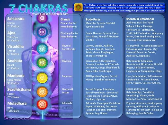 Chakras and organs in the Human Body – Kea0