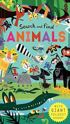Search and Find: Animals by Libby Walden https://www.amazon.com/dp/1626867712/ref=cm_sw_r_pi_dp_x_bfucybS8ZZ3W9