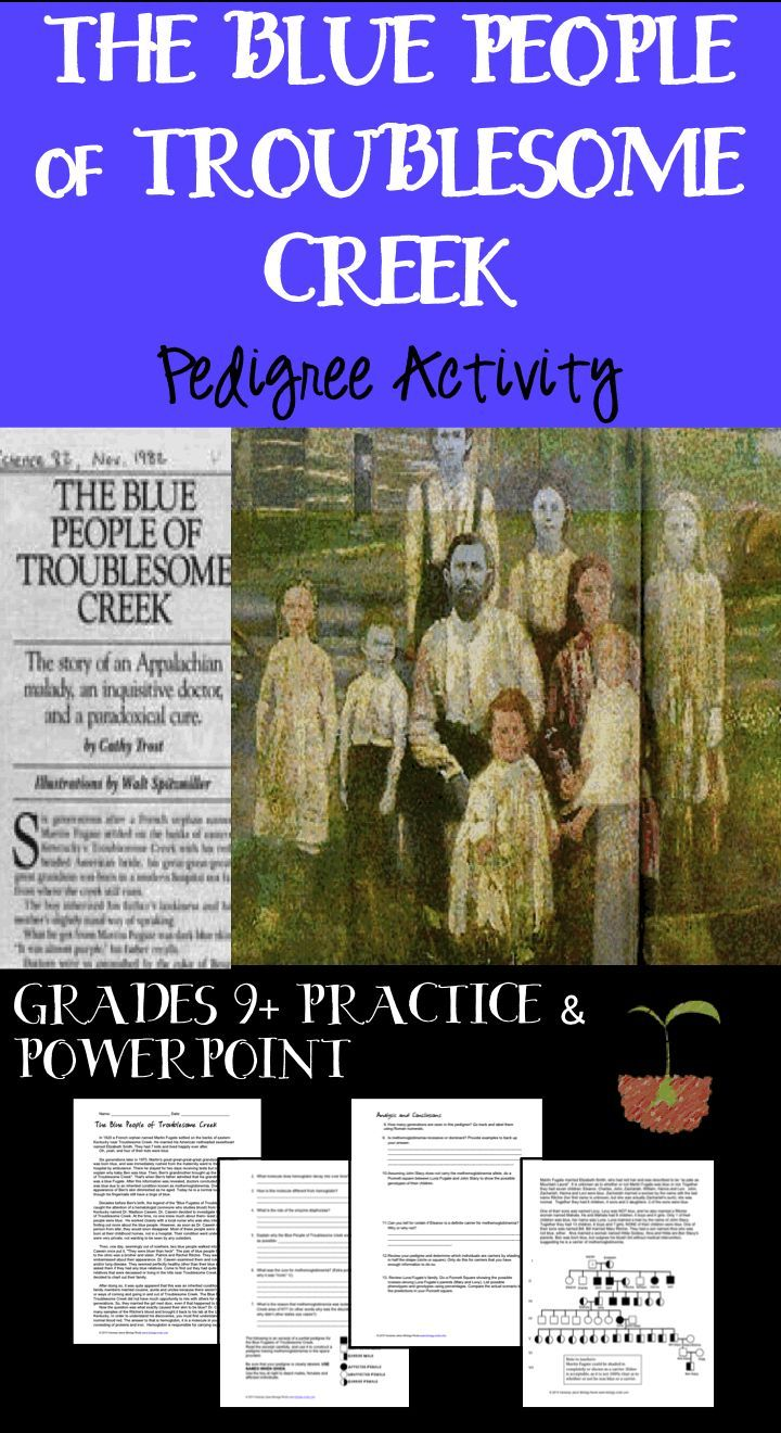 Pedigree Practice- The Blue People Pedigree Activity | Pinterest ...