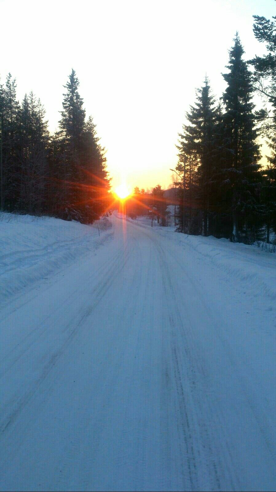 Winter road in the north of Sweden.