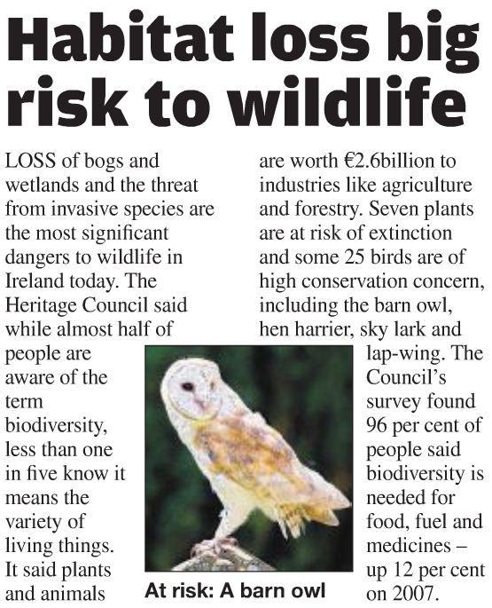 Short article on loss of habitat in Ireland   Biodiversity ...