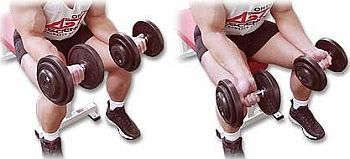 Image result for Dumbbell Wrist Flexion or Dumbbell Wrist Curls