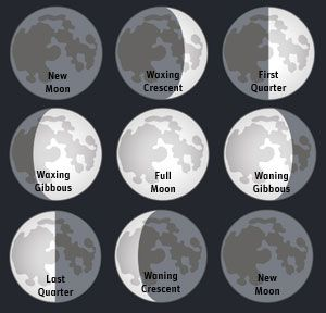 The Phases of the Moon—a Middle School Science Hands-on Lesson ...
