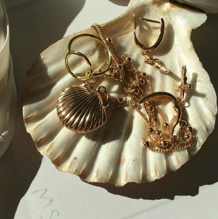 Photo of Gold jewellery, earrings, necklace on sea shell