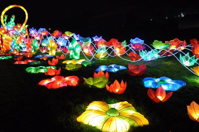 0023f35cbff9b87e192e5945fe101821 - Chinese Lantern Festival Boerner Botanical Gardens